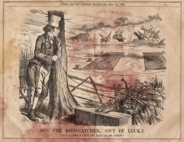 This is a political cartoon about Benjamin Disraeli, but it shows one method used to trap birds in the 1860s.