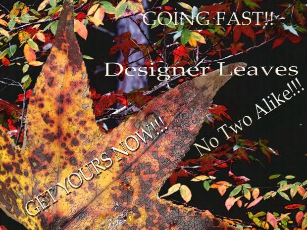 leaf ad