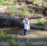 child wading in creek