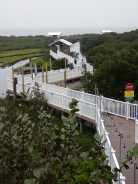 Walkway at South Padre Island Birding and Nature Center.